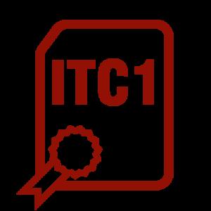 Zertifizierung ITC Level 1